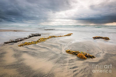 Cardiff State Beach Photograph - Rainy Afternoon At Tabletop Reef by Alexander Kunz
