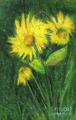 Rain Drawing - Rainy Daisy by Carol Sweetwood
