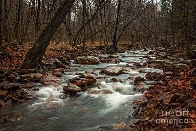 Photograph - Rainy Day At Lee Creek by Larry McMahon