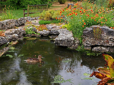 Photograph - Rainy Day At The Pond by Gill Billington