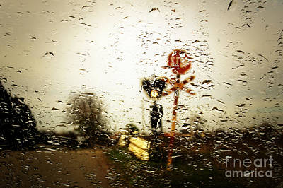 Photograph - Rainy Day by Dimitar Hristov