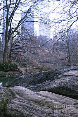 Photograph - Rainy Day In Central Park by Sandy Moulder