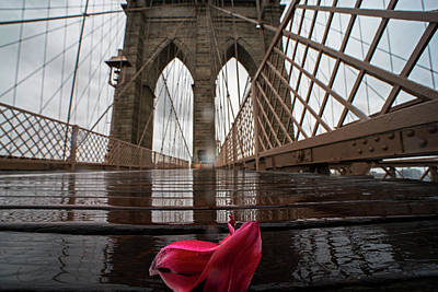 Photograph - Rainy Day On The Brooklyn Bridge Brooklyn New York Tulip Petals by Toby McGuire