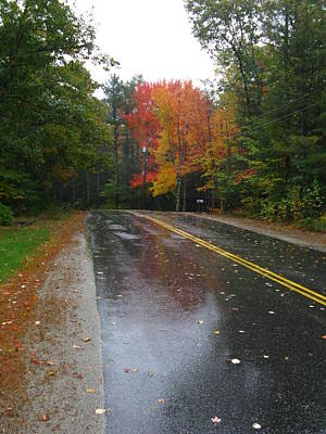 Photograph - Rainy Day Rural Road by Bill Tomsa