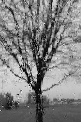Photograph - Rainy Day by Trent Mallett