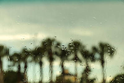 Photograph - Rainy Daze by Christopher L Thomley