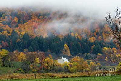 Photograph - Rainy Fall Day by Rhys Templar