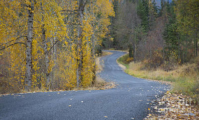 Photograph - Rainy Hill Road by Idaho Scenic Images Linda Lantzy