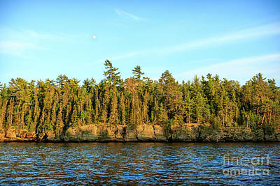 Photograph - Rainy Lake Shoreline by Lori Dobbs