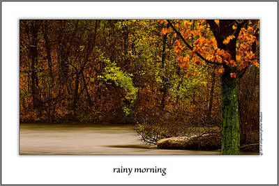 Onyonet Studios Photograph - Rainy Morning by  Onyonet  Photo Studios