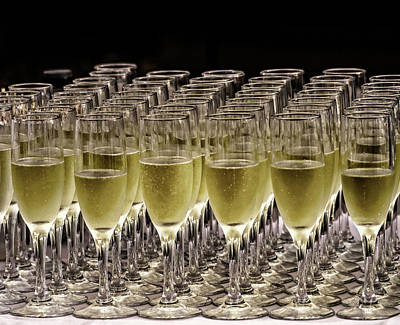 Photograph - Raise A Glass by Robin Zygelman