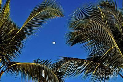 Photograph - Raising Moon At Sunset by Craig Wood