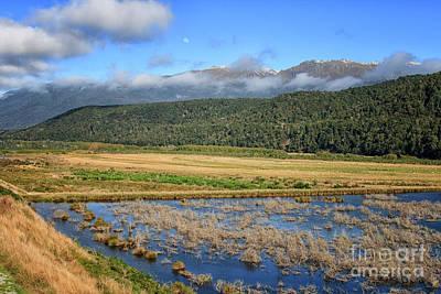 Photograph - Rakatu Wetlands by Patricia Hofmeester