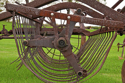 Art Print featuring the photograph Rake 3118 by Guy Whiteley