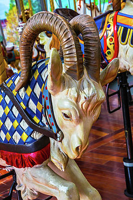 Fanciful Photograph - Ram Carrousel Ride by Garry Gay