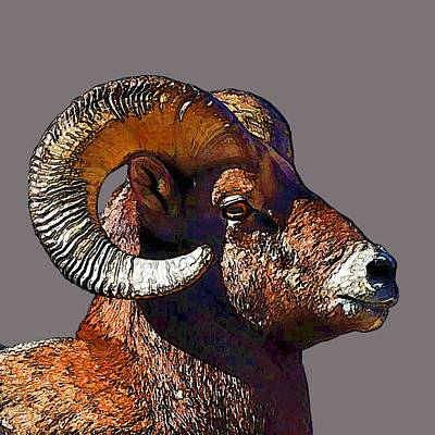 Art Print featuring the digital art  Ram Portrait - Rocky Mountain Bighorn Sheep By Olena Art by OLena Art Brand