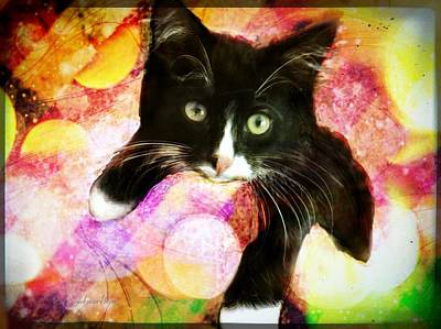 Digital Art - Rama The Miracle Cat by Delight Worthyn