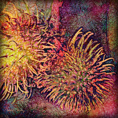 Spiny Digital Art - Rambutan by Barbara Berney