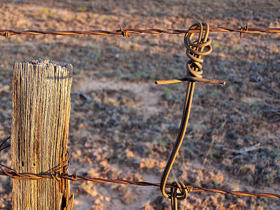Photograph - The Old Ranch Fence by Jeannie Bushman