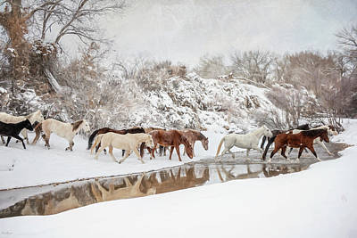 Photograph - Ranch Horse Winter by Phyllis Burchett