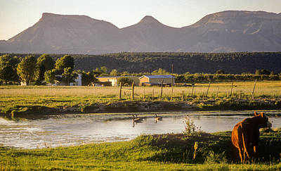 Photograph - Ranch In The Shadow Of Mesa Verde National Park by John Brink