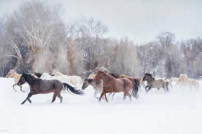 Ranch Run Art Print