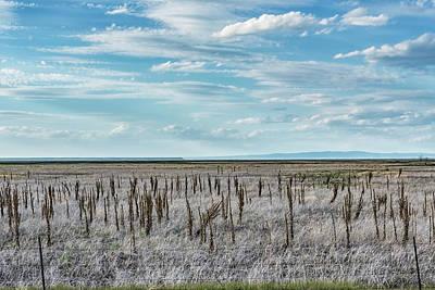 Photograph - Rangeland by Belinda Greb