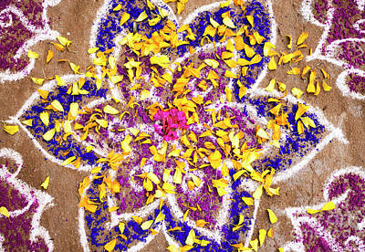 Photograph - Rangoli Petals by Tim Gainey