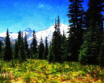 Photograph - Ranier Mountain Meadow by Timothy Bulone