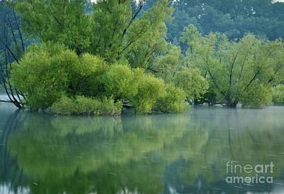 Photograph - Rankin Reflections 2 by Douglas Stucky