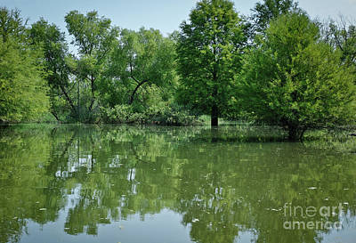 Photograph - Rankin Reflections 3 by Douglas Stucky