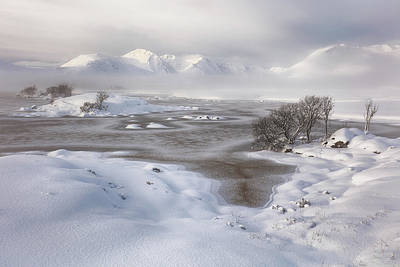 Photograph -  Rannoch Moor Winter by Grant Glendinning