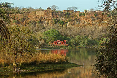 Photograph - Ranthambore  by Jean-Luc Baron