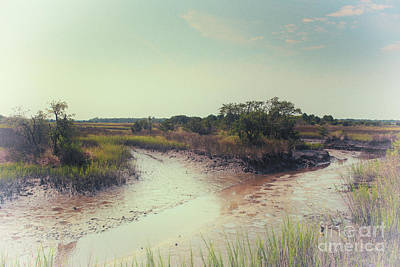 Photograph - Rantowles Creek Southern Marsh by Dale Powell
