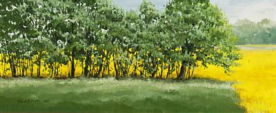 Painting - Rape Seed Fields by Robert Foster