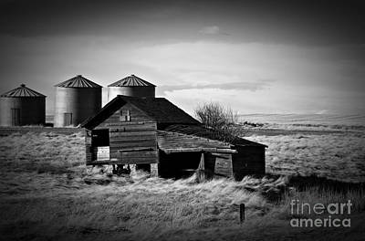 Photograph - Rapelje Farm 2 Bw by Chalet Roome-Rigdon