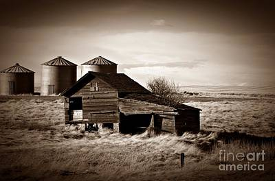 Photograph - Rapelje Farm 2 Sepia by Chalet Roome-Rigdon