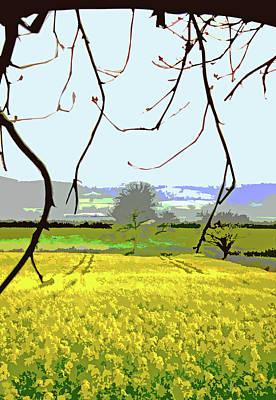 Digital Art - Rapeseed Field by Mary Castellan