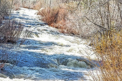 Photograph - Rapids On The Carson by Nancy Marie Ricketts