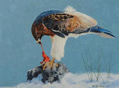 Painting - Raptor by E Colin Williams ARCA