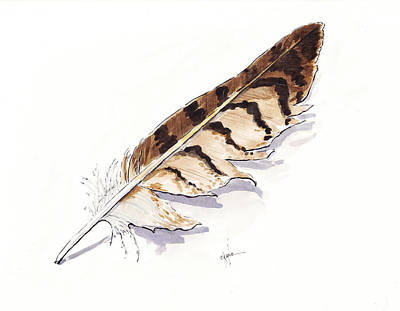 Feathered Painting - Raptor Feather by Christine Camp
