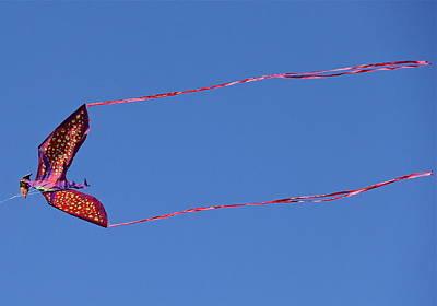 Photograph - Pterosaur Kite by Denise Mazzocco