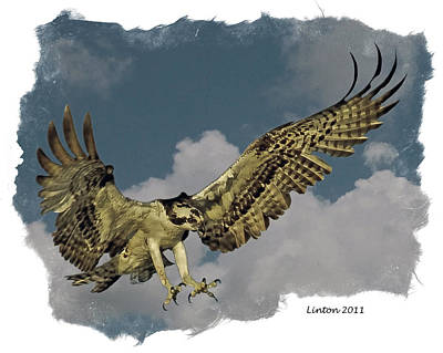 Raptor Art Print by Larry Linton