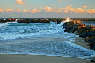 Rapture On Cape Cod Bay Art Print by Dianne Cowen