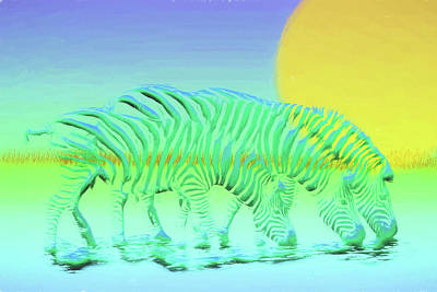 Digital Art - Rare Chameleon Zebra by John Haldane