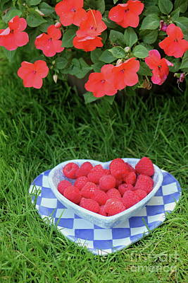 Photograph - Raspberries And Impatiens by The Art of Alice Terrill