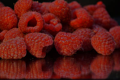 Photograph - Raspberries by Pamela Walton