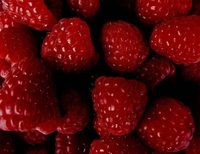 Photograph - Raspberries by Valerie Ornstein
