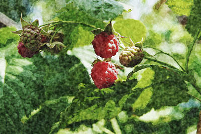Painting - raspberry Bush by Tatiana Tyumeneva