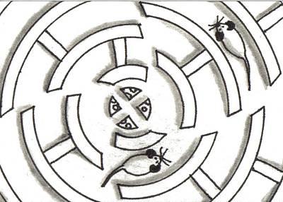 Rat Race Mouse Maze Art Print by Joshua Hullender
